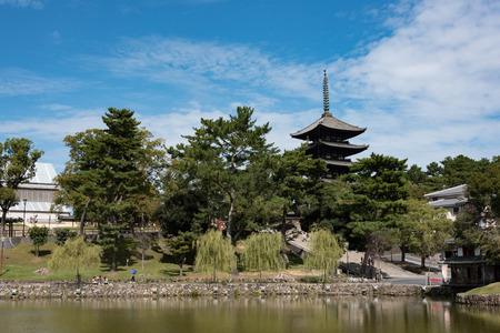 興福寺、猿沢の池 報道画像