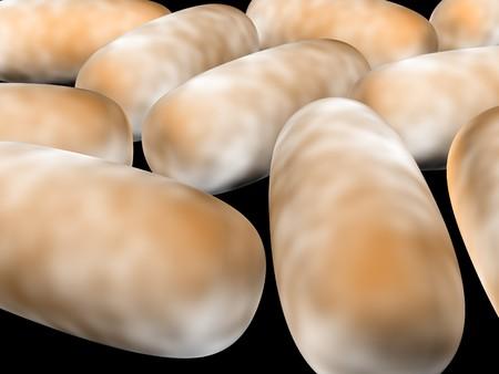 organisms: 3D render of bacteria Stock Photo