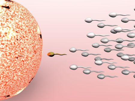 Ter illustratie mannelijke sperma cellen bemestings-een vrouwelijke ei cartoon  Stockfoto