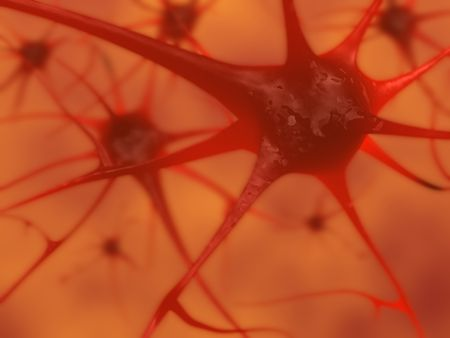 receptor: 3D illustration of neurons in the brain Stock Photo