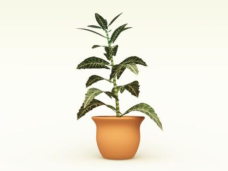 テラコッタのポットでの室内装飾のための室内植物の 3 D イラストレーション
