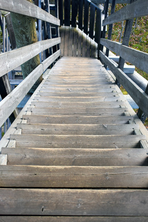 steps and staircases: Wooden stairs down from lookout tower. Stock Photo