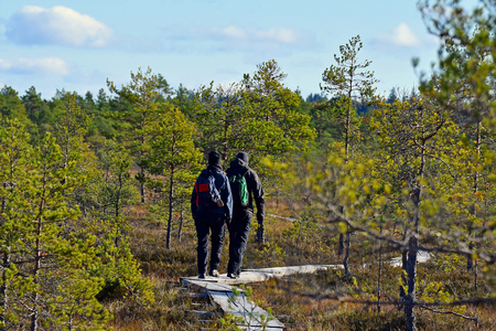 duckboards: Couple trekking on a wooden hiking trail. Stock Photo