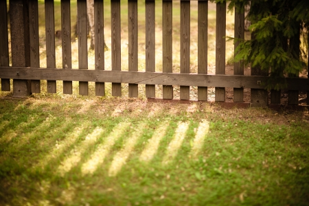 Sun shining through wooden fence photo