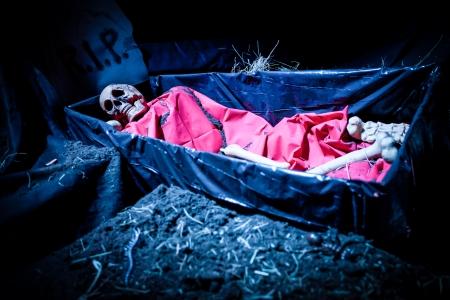 Halloween decoratie pop skelet in een begrafenis kist Stockfoto