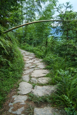 Stone path in chinese forest photo