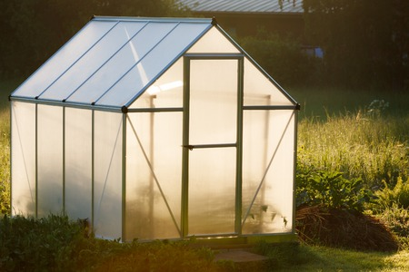 Small greenhouse in backyard in a golden light of dawn