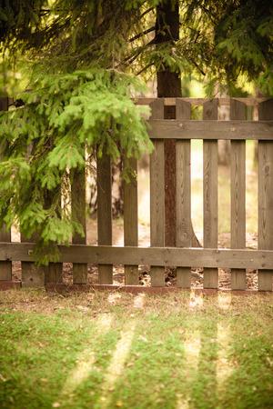 pasture fence: Sun shining through wooden fence Stock Photo