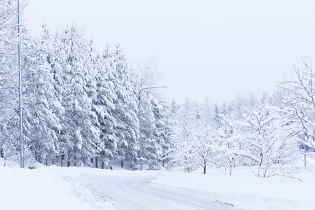 snowbanks: Snow landscape and road
