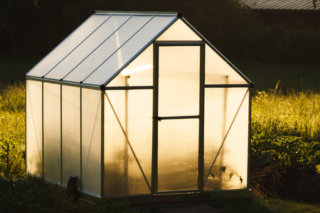 Small greenhouse in backyard Banque d'images