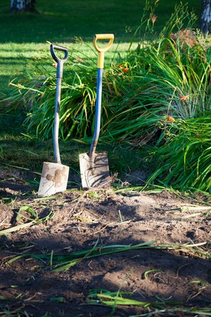 laboring: Two shovels in ground