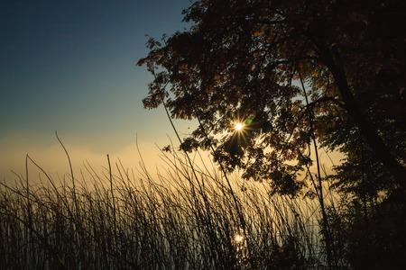lakeside: Moody morning at lakeside