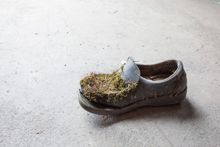 breakage: Abandoned moss-grown shoe Stock Photo