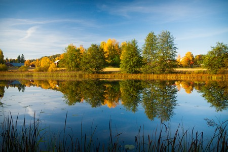calm water: Calm water autumn nature reflection Stock Photo
