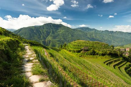china landscape: Longsheng rice terraces guilin china landscape at summer Stock Photo