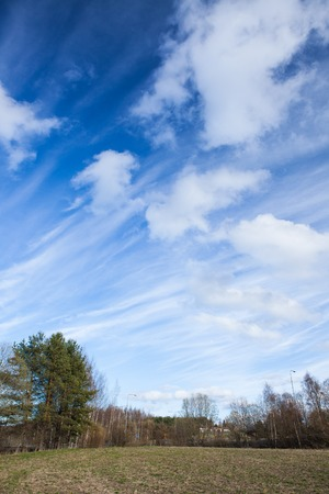 skyscape: Long cirrus clouds skyscape panorama