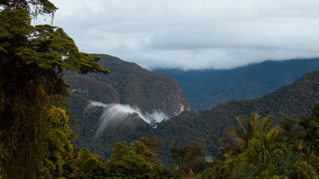 Exotic rainforest landscape from gunung mulu national park borneo malaysia