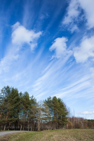 cirrus clouds: Long cirrus clouds skyscape panorama