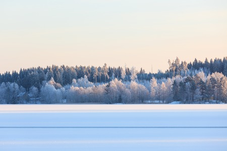 winter finland: Winter lake scenery in finland at evening