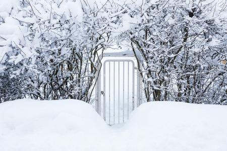 Kleines Tor in der Hecke zum Haushof am Winter