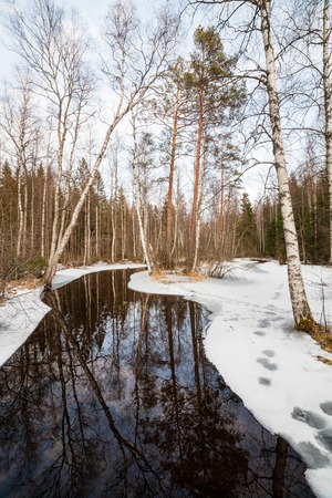 partially: Partially frozen forest river at spring in finland Stock Photo