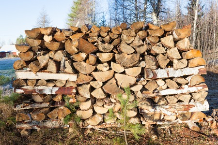 stored: Firewood pile stored outside summer cabin