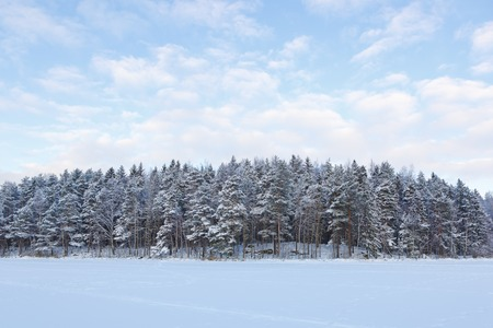 Frozen lake and snow covered forest at sunny winter day in finland Standard-Bild