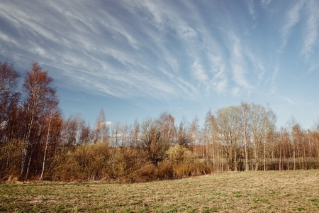 cirrus: Landscape and long cirrus clouds Stock Photo