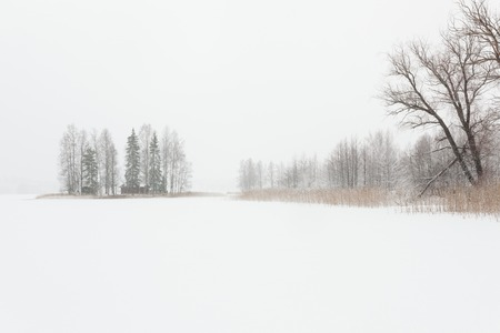 a blizzard: Blizzard winter landscape at frozen lake in Finland