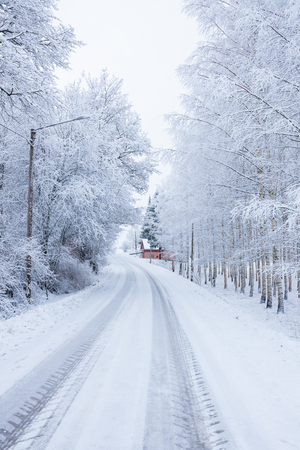 Small road in countryside at winter