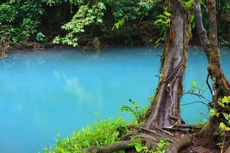 cerulean: Rio celeste and vegetation
