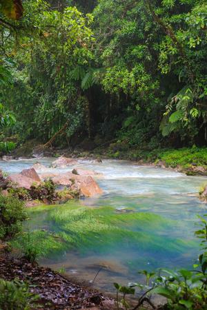 cerulean: Rio celeste and lush rainforest