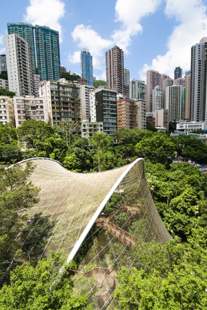 Aerial view over hong kong park
