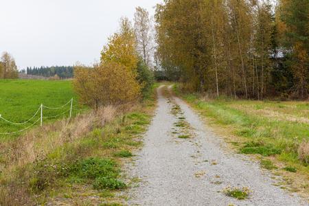 dirt: Dirt road at countryside Stock Photo