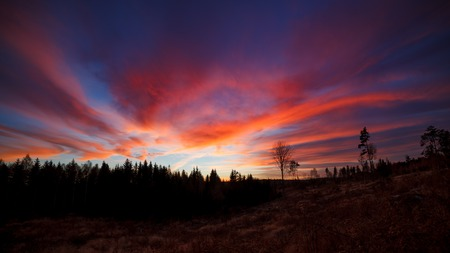 huge tree: Beautiful vibrant sunset clouds view landscape in Finland