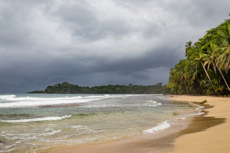 Beach forest and storm sky