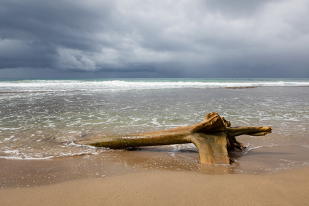 Driftwood log at beach and storm clouds