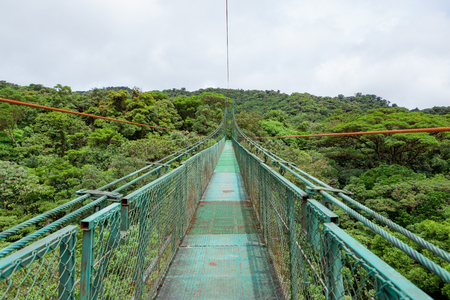 and hiking path: Hanging suspension bridge in Monteverde cloud forest reserve Costa Rica