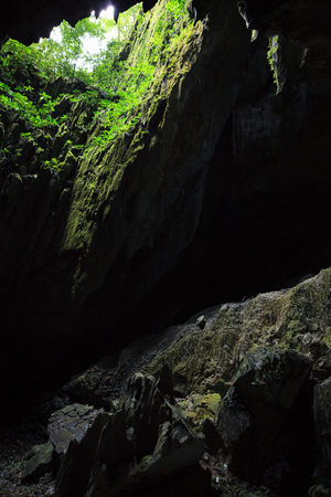 Cave opening to lush forest Gunung Mulu national park Borneo Malaysia