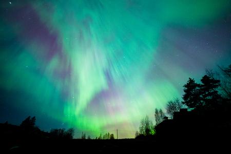 Northern lights aurora borealis tree landscape at night Stock Photo