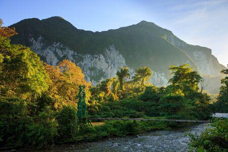 Bujna scena leśna o porannym wschodzie słońca w Gunung Mulu Borneo w Malezji