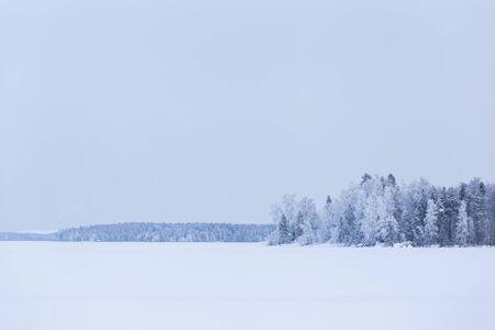 Minimalistic winter lake landscape cloudy day background Zdjęcie Seryjne