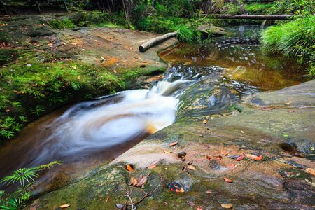 Small whirlpool in stream at forest bako national park in malaysia borneo