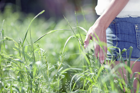 Young woman touching plants in meadow
