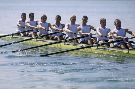 Team of rowers LANG_EVOIMAGES