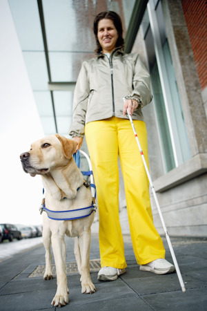 Blind woman and seeing eye dog on sidewalk LANG_EVOIMAGES