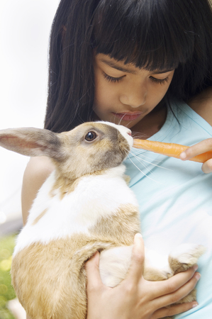 Young girl feeding carrot to rabbit