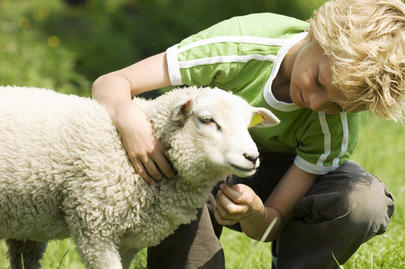 Young boy petting lamb outdoors LANG_EVOIMAGES