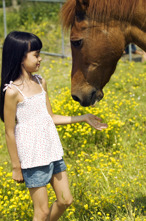 Young girl and horse in pasture LANG_EVOIMAGES