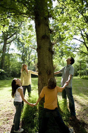 30s family holding hands around base of three in green countryside looking up into branches LANG_EVOIMAGES